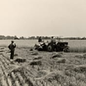Bill Richardson's Farming in 1942 article - harvest binder