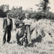 Bill Richardson's Farming in 1942 article - harvest stooks.