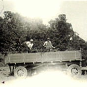 Ernst-Wilhelm Peter's memories of East Hatley - Bill Thacker and Ernst-Wilhelm Peter dung carting, East Hatley 1950.
