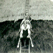 Thatched stacks, 1949.