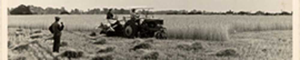 Bill Richardson's 'Farming in 1942' article – harvest binder.