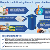 Plastics which you can put into your blue bin.